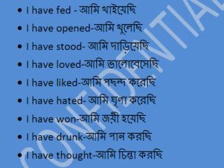 Sentence making using 'I have'